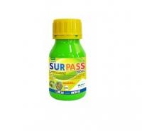 Surpass